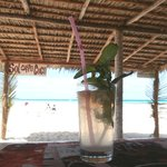 Playa Larga Beach