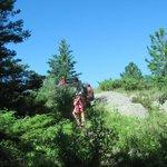 Hiking the Greenstone Ridge Trail