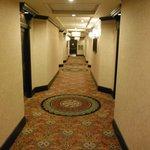 Hallway 6th floor