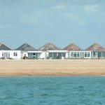 The beachfront bungalows