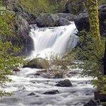 Graeagle Waterfall at Gray Eagle Lodge