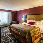 Newly Renovated Deluxe King Room