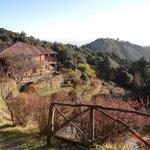 Binsar Retreat - one of the many views