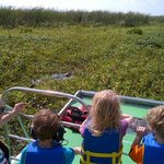 Marsh Beast Airboat Toues