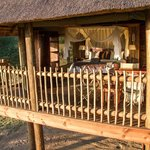 Photo de nThambo Tree Camp
