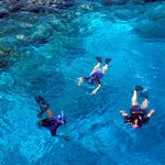 Snorkeling with Atoll Adventures