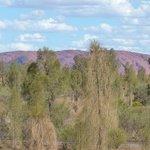 Zimmerblick auf Uluru