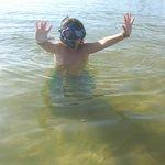 A buscar peces