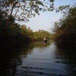 Sunrise canoe trip