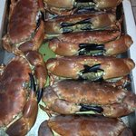Fresh crabs cooked especially for you!