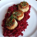 Scallops and beet risotto