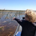looking for gators!