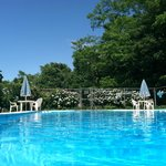 Beautiful Large Heated Pool; Located amongst the tranquility of our backyard grounds!