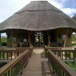Ulusaba Airport Arrivals, Departures and Reception !