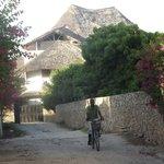 Jambo House vista dalla strada