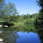 La rivière Le Lignon