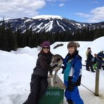 Owner Taryn Rixon, Nanook and our son