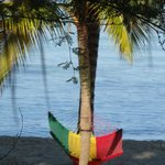 One of the comfy hammocks on the beach.