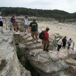 Guided Educational Tours-Ages 7 & up, $10 per person for a three hour tour
