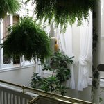 Our hallways are decorated with antiques and an abundance of foliage.