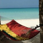 This is one of the hammocks on the beach at Nirvana