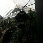 Gas Lamp in Courtyard