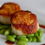 Scallops from our Chef Tasting Menu