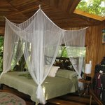 Glade room with king bed