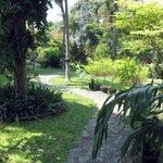Kleiner Garten im Garden Lodge