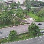 View fm my window