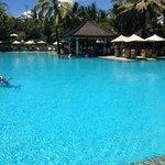pool - amazing!!