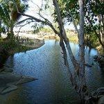 Turtle Cove Fresh Water Stream
