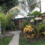 Jardin et porte de sortie / entrée.
