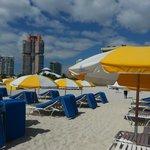 Hilton Beach area