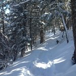 Trail!