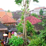 Amazing views in the heart of Ubud