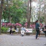 Park as Rest Stop