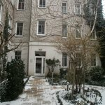 Winter garden with snow