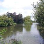 Jubilee Lake, Royal Wootton Bassett