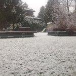 Giardino esterno durante una nevicata