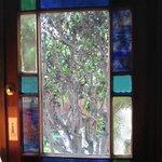 View out Unopenable Door in Living Room