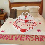 Message from Maids Written in Flower Petals