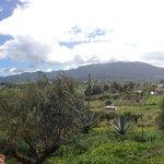 uitzicht vanaf de rand van de tuin