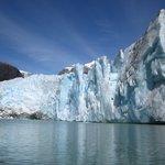 Glaciar leones