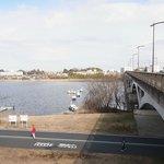 サイクリング(ウィオーキング、ランニング)ロードと手賀沼大橋