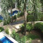 Vue sur la piscine et jardin