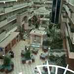 Atrium from 5th floor