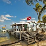 The Real White Sands Dive Shop