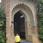 Village gate at Pratap Garh Farms