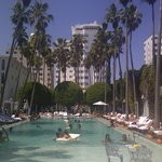 Famous Delano Pool